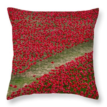 Poppies Of Remembrance Throw Pillow by Martin Newman