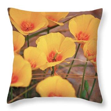 Poppies On Mount Lemmon Throw Pillow