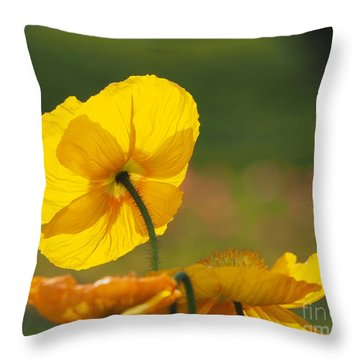Poppies Seeking The Light Throw Pillow