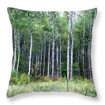 Popple Trees Throw Pillow