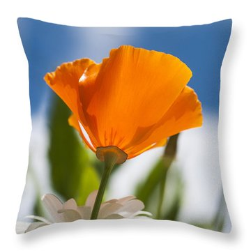 Poppy And Daisies Throw Pillow