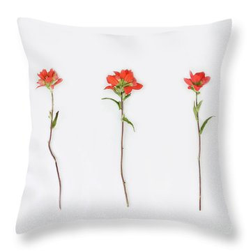 Poppy Blossoms Throw Pillow by Brittany Bevis