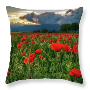 Poppy Field At Sunset Throw Pillow