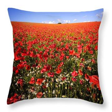 Poppy Field Throw Pillow by Meirion Matthias