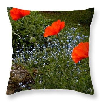 Poppy Foursome Throw Pillow