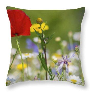 Poppy In Meadow  Throw Pillow