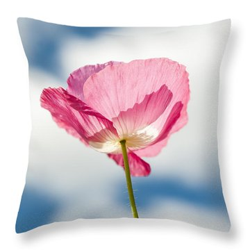 Poppy In The Clouds Throw Pillow