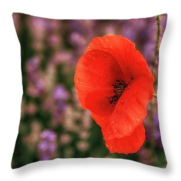 Poppy In The Lavender Field Throw Pillow
