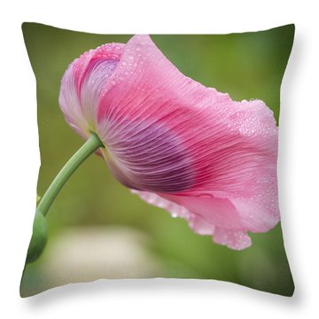 Poppy In The Wind Throw Pillow