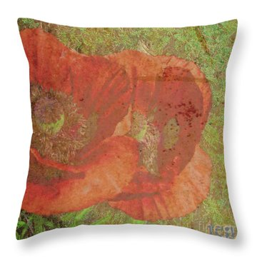 Throw Pillow featuring the photograph Poppy Love by Traci Cottingham