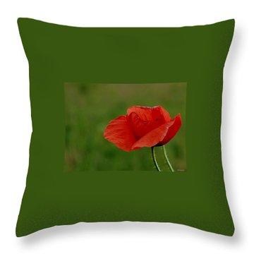 Throw Pillow featuring the photograph Poppy by Marija Djedovic