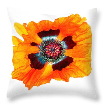 Poppy Pleasing Throw Pillow