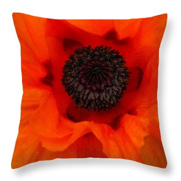 Throw Pillow featuring the painting Poppy by Renate Nadi Wesley