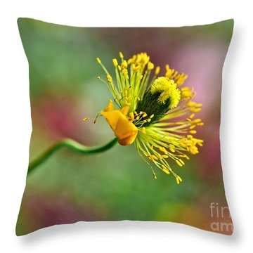 Poppy Seed Capsule Throw Pillow by Kaye Menner