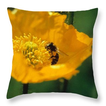 Poppy With Bee Friend Throw Pillow by Laurie Paci