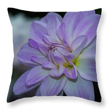 Porcelain Dahlia Throw Pillow
