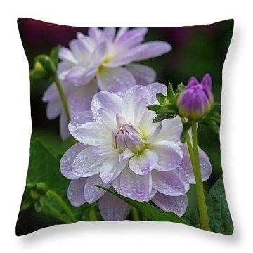 Porcelain Dahlias 2 Throw Pillow