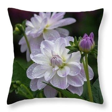Porcelain Dahlias Throw Pillow