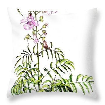 Throw Pillow featuring the painting Port St John's Creeper by Heidi Kriel