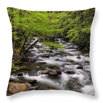 Porters Creek Throw Pillow by Madonna Martin