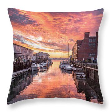 Angle Fishes Throw Pillows