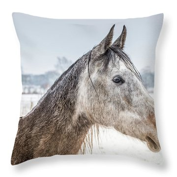 Portrait Amigo Throw Pillow