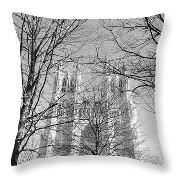 Portrait Of A Cathedral Throw Pillow