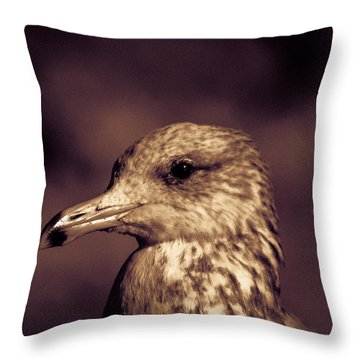 Portrait Of A Gull Throw Pillow