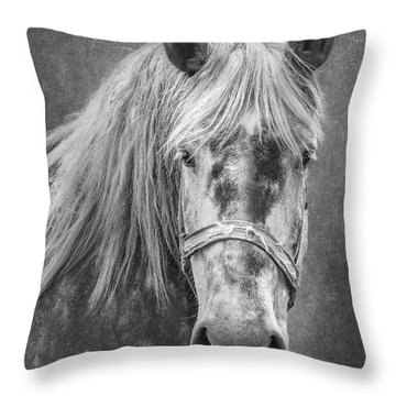Throw Pillow featuring the photograph Portrait Of A Horse by Tom Mc Nemar
