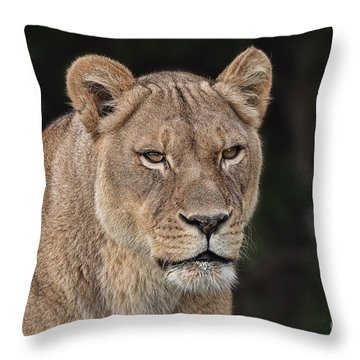 Portrait Of A Lioness II Throw Pillow