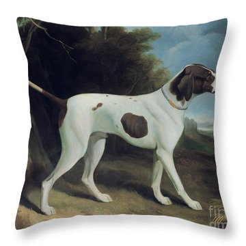 Portrait Of A Liver And White Pointer Throw Pillow by George Garrard