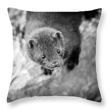 Portrait Of A Mink Throw Pillow