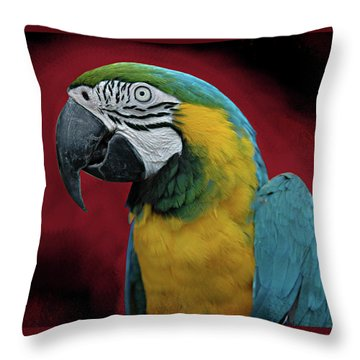 Throw Pillow featuring the photograph Portrait Of A Parrot by Jeff Burgess