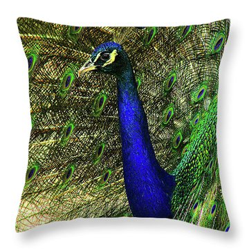 Throw Pillow featuring the photograph Portrait Of A Peacock by Jessica Brawley