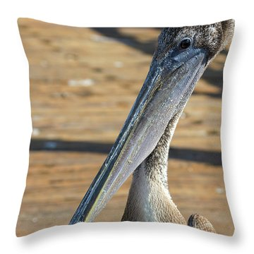 Portrait Of A Pelican On The Pier Throw Pillow