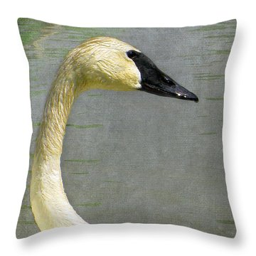 Portrait Of A Pond Swan Throw Pillow