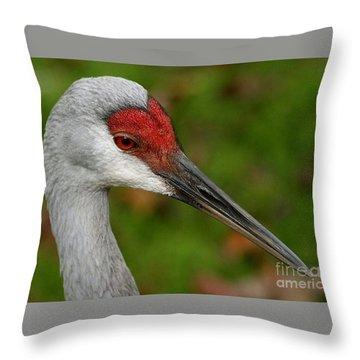 Portrait Of A Sandhill Crane Throw Pillow