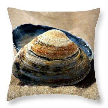 Throw Pillow featuring the photograph Portrait Of A Seashell by John Rizzuto