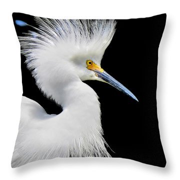 Portrait Of A Snowy White Egret Throw Pillow by Jennie Breeze