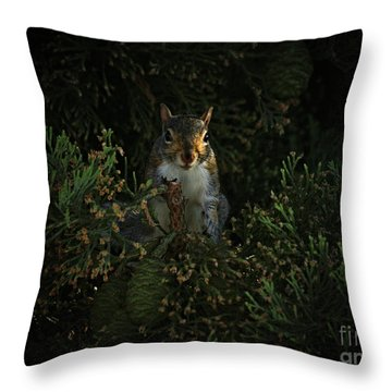 Portrait Of A Squirrel Throw Pillow
