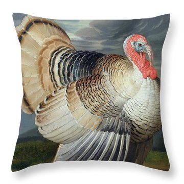 Portrait Of A Turkey  Throw Pillow