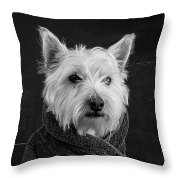 Throw Pillow featuring the photograph Portrait Of A Westie Dog 8x10 Ratio by Edward Fielding