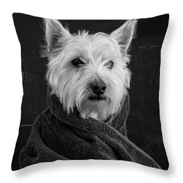 Portrait Of A Westie Dog Throw Pillow by Edward Fielding