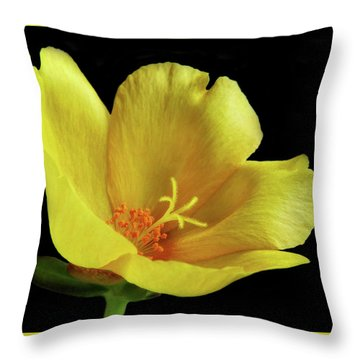 Throw Pillow featuring the photograph Portrait Of A Yellow Purslane Flower by David and Carol Kelly