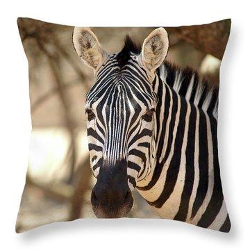 Portrait Of A Zebra Throw Pillow