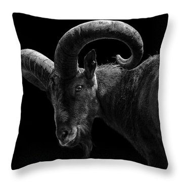 Portrait Of East Caucasian Tur In Black And White  Throw Pillow