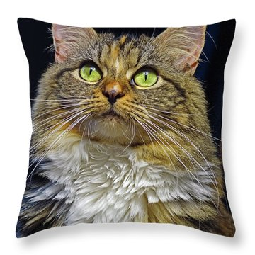 Portrait Of Holly Throw Pillow