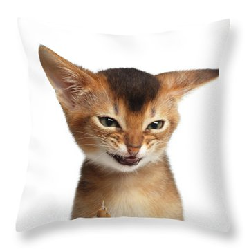 Portrait Of Kitten With Showing Middle Finger Throw Pillow