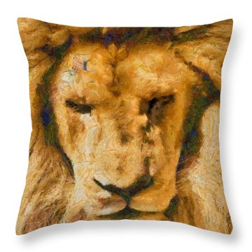 Throw Pillow featuring the photograph Portrait Of Lion by Scott Carruthers