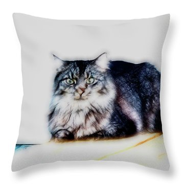 Portrait Of Maine Coon, Mattie Throw Pillow